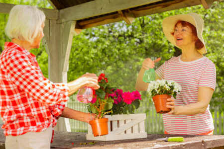 Health Benefits of Gardening for Seniors Birmingham