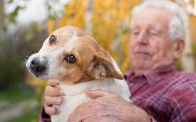 Pet Therapy for Seniors of Birmingham